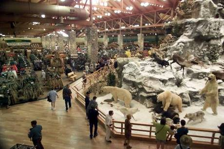 The Cabela's in-store experience